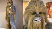 Wookie suit from Star Wars
